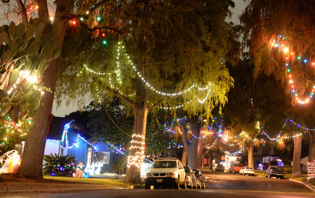 . Neighbors decorate the trees that line the 14400-block of Eastridge Drive in Whittier on Thursday December 19, 2013. (Photo by Keith Durflinger/Whittier Daily News)