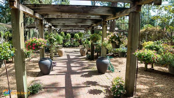 Tallahassee Garden Nursery
