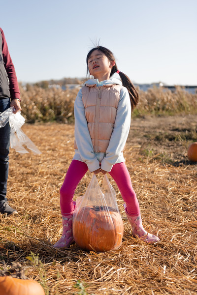 PumpkinPatch2019_019.jpg