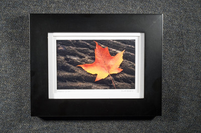 Maple Leaf - $30