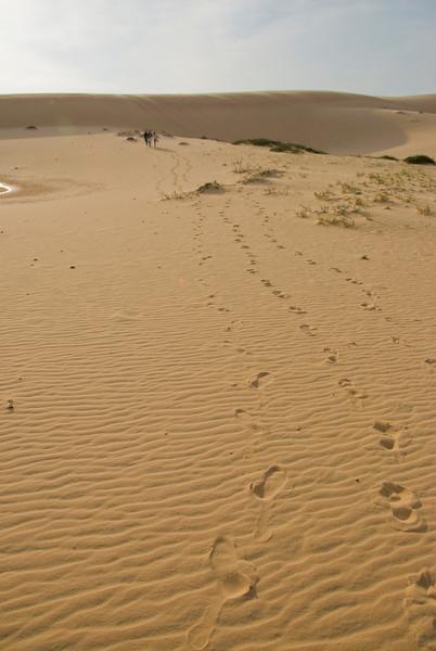 Footsteps at the white sand dunes - Mui Ne, Vietnam