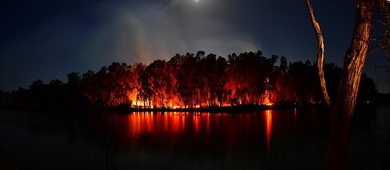 Reedy Island fire