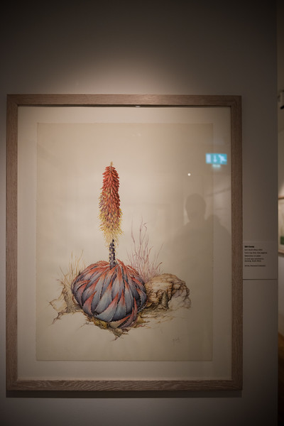 Chihuly Exhibit, Shirley Sherwood Gallery, Kew Gardens