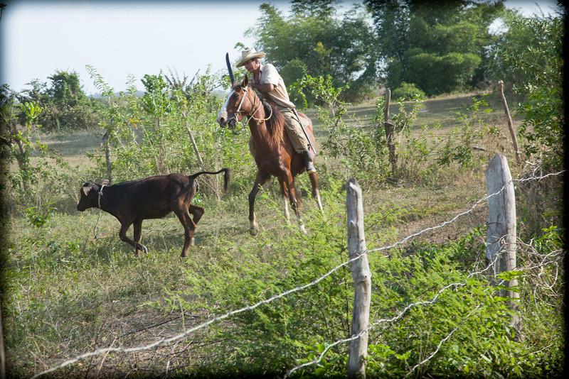 Cuba-Trinidad-IMG_2426.jpg