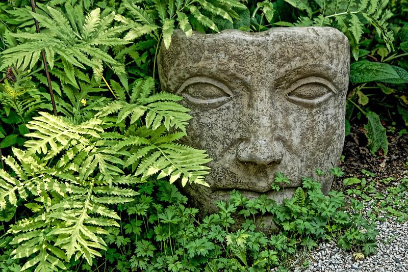 Face in the garden - 20110720-_DSC0012.jpg