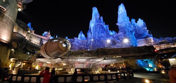 Disneyland & Universal Studios