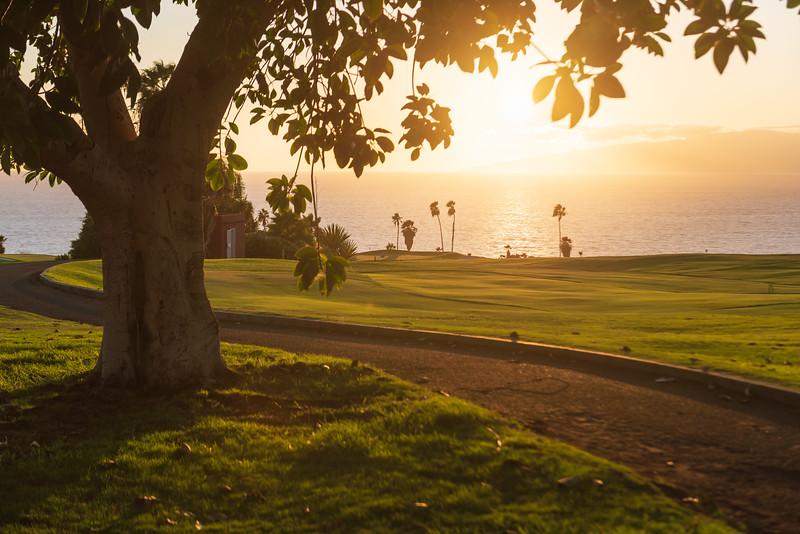 Golf Adeje_20191013_4392.jpg