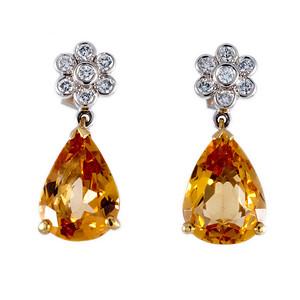 20120302 James Ness Earrings