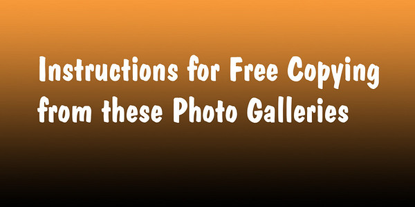 Instructions for Free Copying of Photos