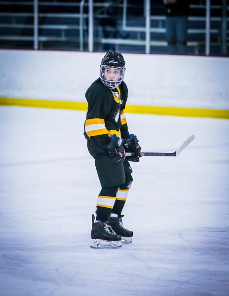 Bruins2-405.jpg