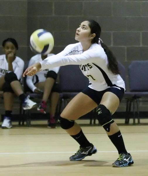 VCA-Volleyball-197.jpg