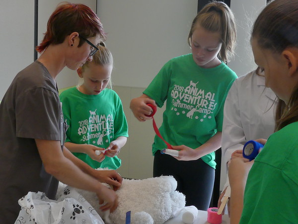 Animal Adventures Day Camp 2018