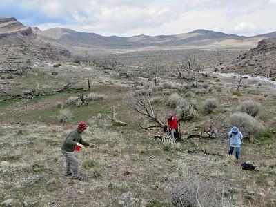 2020 Providence Mountains, Mojave