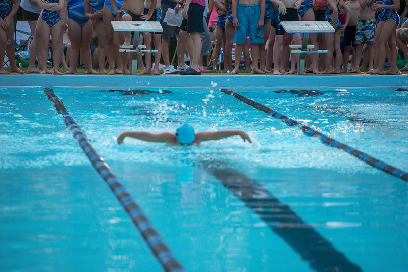 lcs_swimming_kevkramerphoto-066.jpg