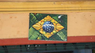 Viagem ao Brasil 2008-2009
