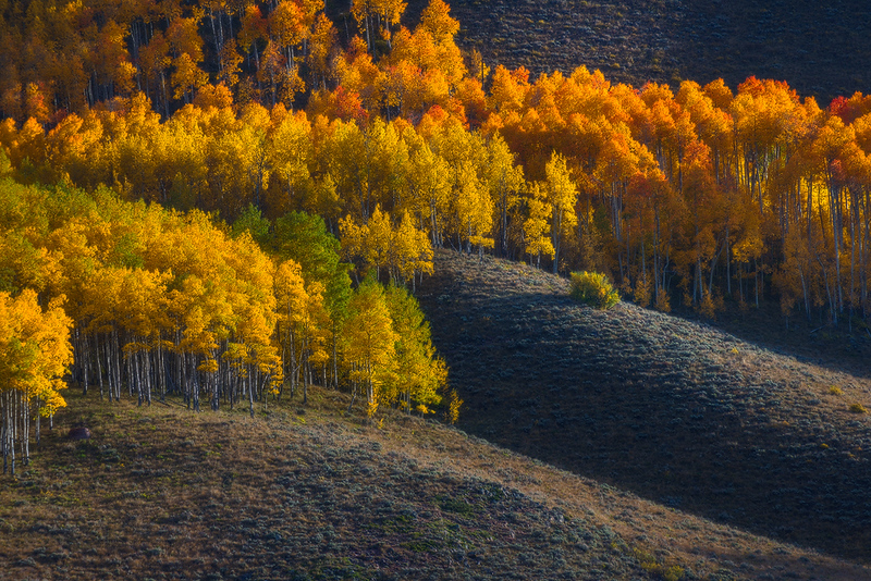 Gunnison - Glowing Colors