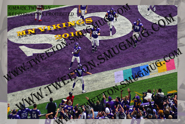 Best Of MN Vikings '18