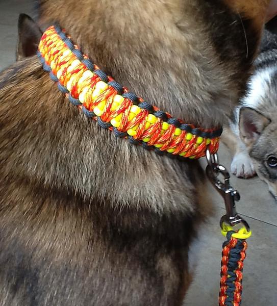 Kari's paracord halsband, clos-up