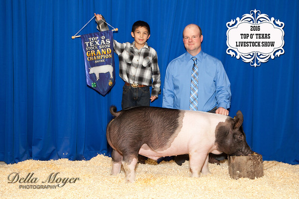 Grand Champ Swine