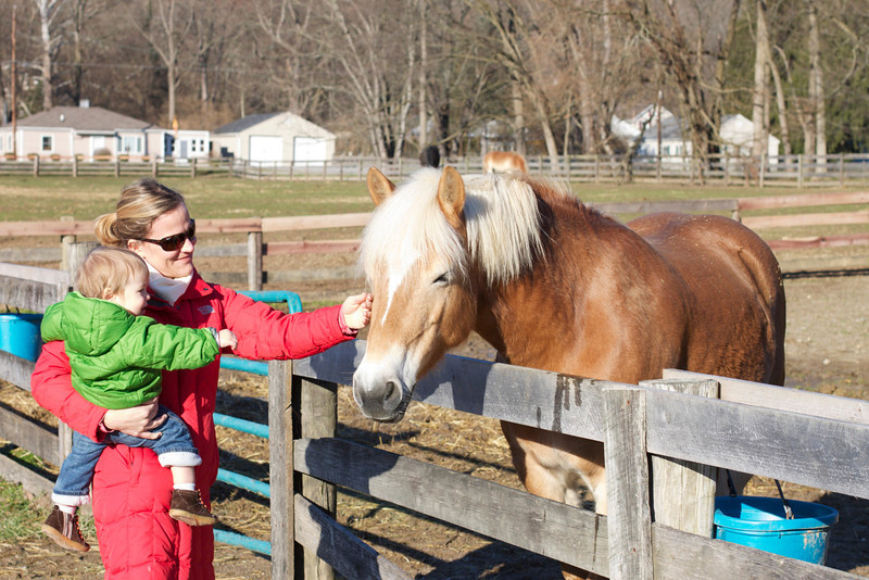 Visiting the horse farm where Erin's mom rides and volunteers.