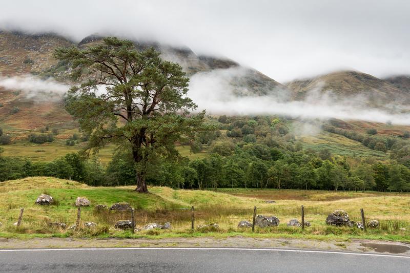 Mist in Glen Nevis