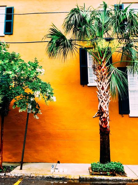 charleston orange.jpg