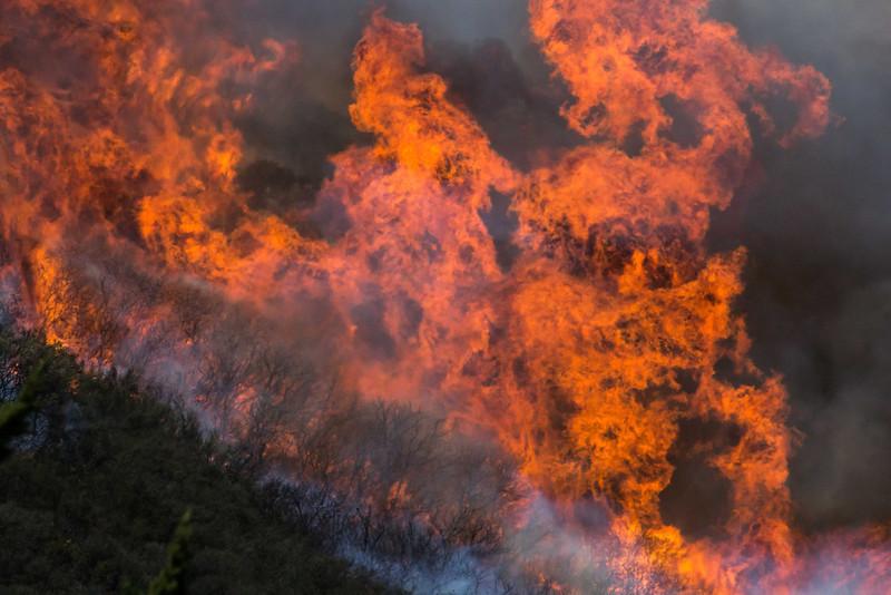 Camarillo Creek Fire (11).jpg