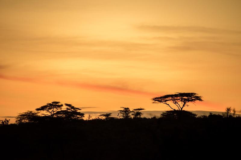 Samburu (58 of 70).jpg