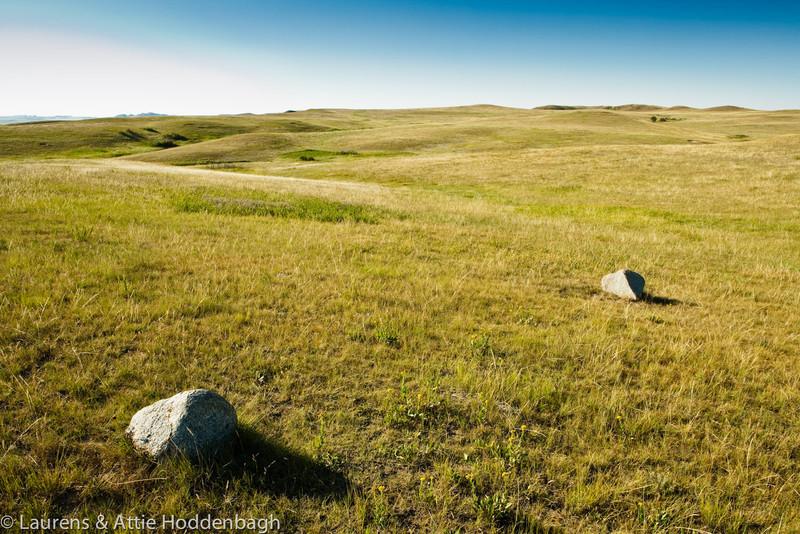 Grassland in Theodor Roosevelt NP, North Unit, ND