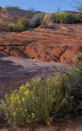 Waterhole Canyon