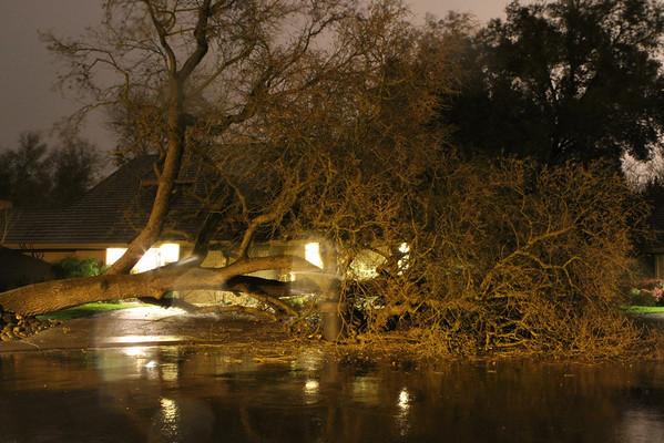 2012 Murphy Court Tree Fall