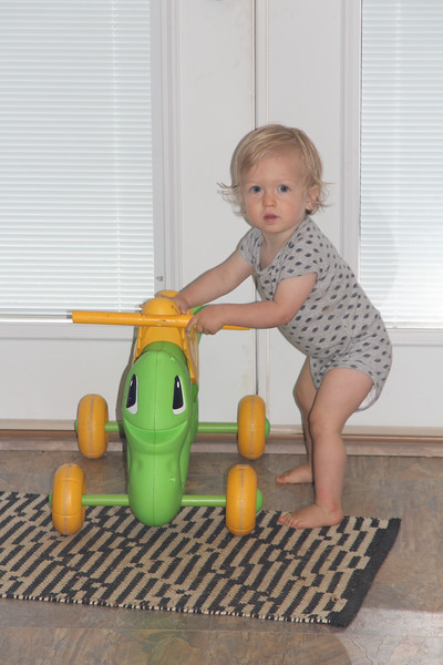 He doesn't ride this thing yet, but likes to push it around