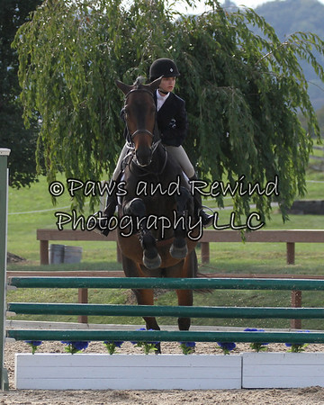 Hunter Ring:  3' Hunter/Medal