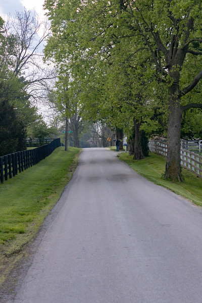 Manchester Horse Farm Lexington KY  April 25, 2019   020.jpg