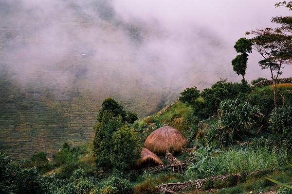 Papua Indonesia Color