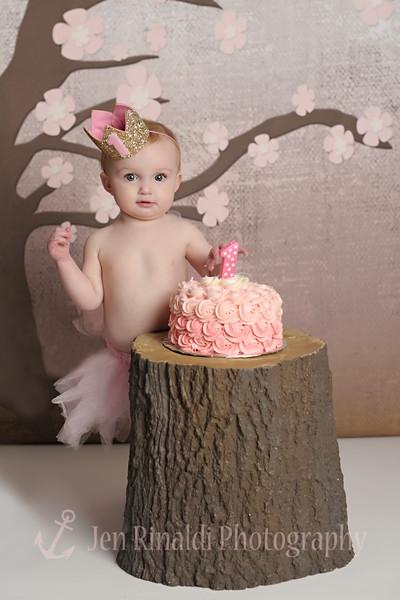Bria 1 year & Cake Smash 3/11/15
