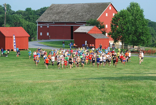 Run with the June Bugs 2014 - Photos by Dan DiFonzo