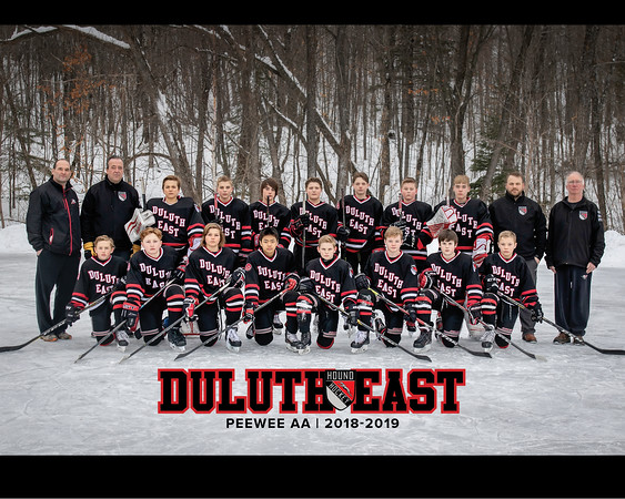 East_PeeWee_AA_Hockey_2019
