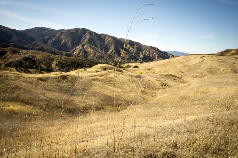 20181201027-Golden Valley Trailwork.jpg