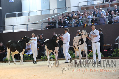 Eurpean Young Breeder Jr Showmanship