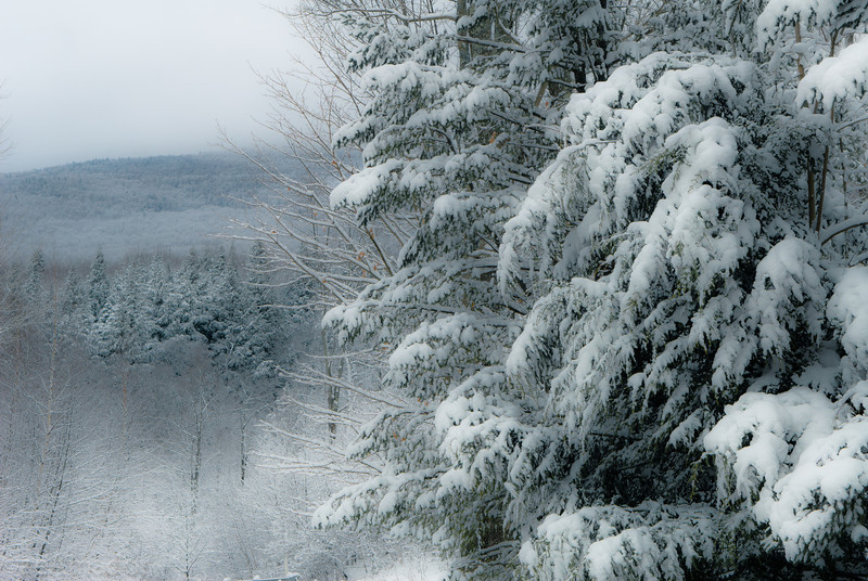 Winter Wonderland in Vermont-9.jpg