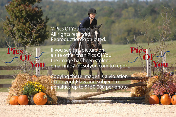 2011 Jumper/ Hunter Shows