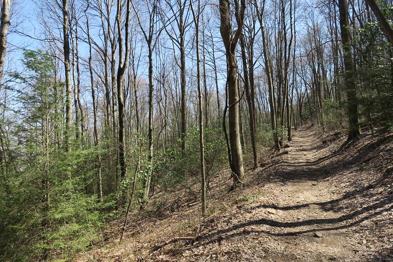 Ridge Trail - 3,350'
