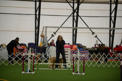 Lancaster Kennel Club AKC Agility Trial