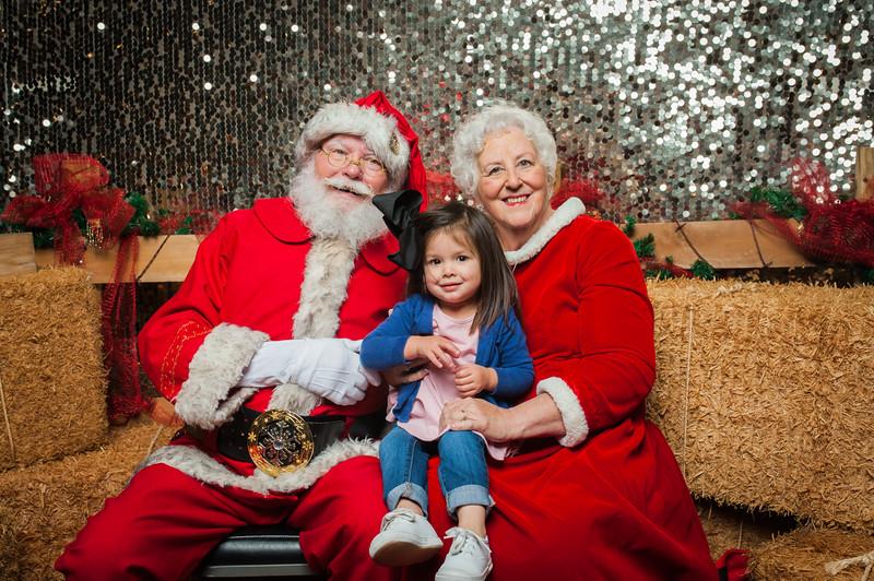 Christmas Roundup 2018-250.jpg