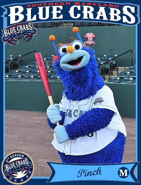 Pinch Baseball Card.jpg