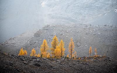 2020-09-18 Pocaterra Ridge