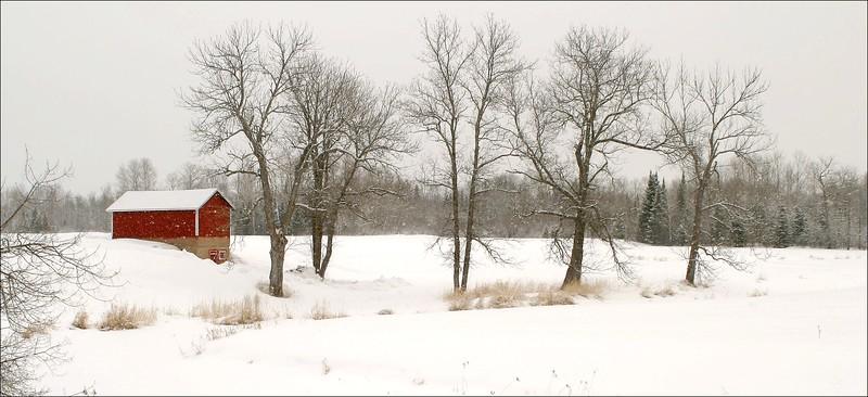 Red barn snowy field [February; Sax-Zim Bog, St. Louis County, Minnesota]