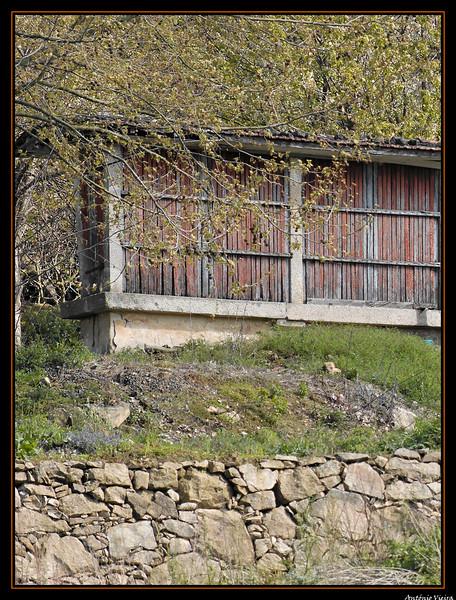 Vouga - 29-03-2008 - 5598.jpg