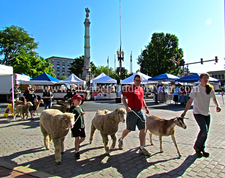 Easton Farmers Market, Easton, PA 5/19/2012